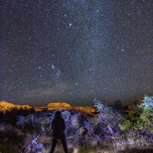 Autorretrato Nocturno